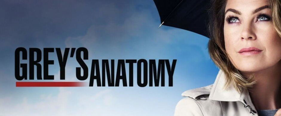 Greys Anatomy Watch Tv Series With Matching Subtitles